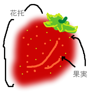Cocolog_oekaki_2017_02_14_16_33
